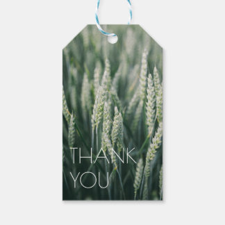 Organic Wheat | Natural Thank You Pack Of Gift Tags