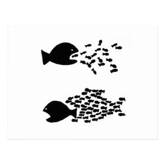 organize fish postcard