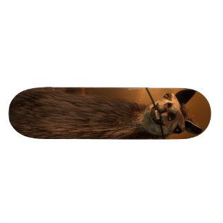 Orgle Custom Skateboard