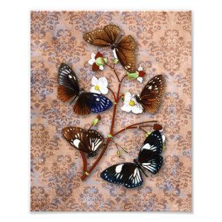 Oriental Butterflies with Grunge Damask Background Photo Art