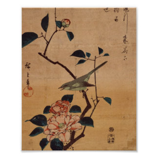 Oriental Camellia and Warbler Poster