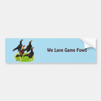 Oriental Game Fowl Quartet Bumper Sticker