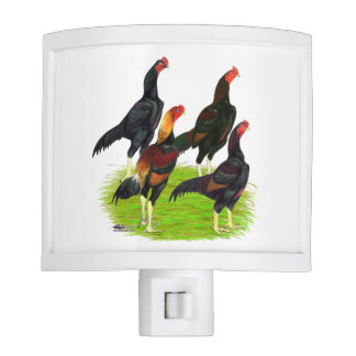 Oriental Game Fowl Quartet Nite Lights