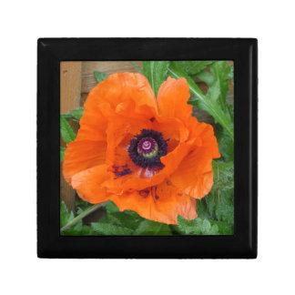 Oriental Garden Poppy Gift Box