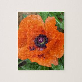 Oriental Garden Poppy Puzzle