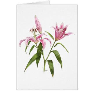 Oriental Lily - Stargazer Card