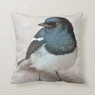 Oriental Magpie-Robin (Copsychus saularis) Throw Pillow