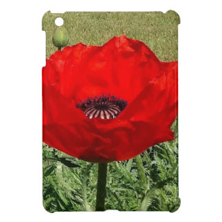 Oriental Poppy Case For The iPad Mini