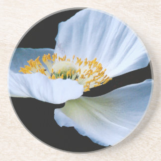 Oriental Poppy Flower Coaster