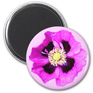 Oriental Poppy fridge magnet pink