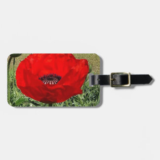 Oriental Poppy Luggage Tag