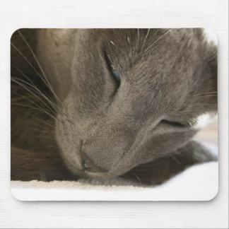 Oriental Shorthair Cat Mouse Mat