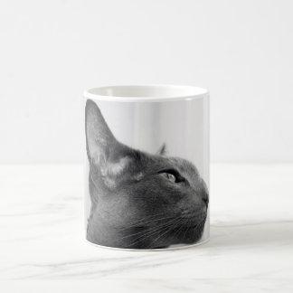 Oriental Shorthair Cat Mug