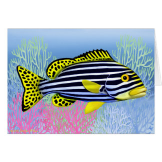 Oriental Sweetlips Reef Fish Card