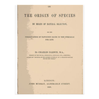 Origin of Species by Means of Natural Selection Letterhead Design