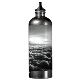 "Original art: ""the flock is calm"" water bottle"