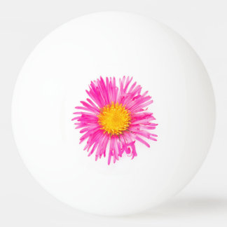 Original cute single PINK FLOWER blossom plant Ping Pong Ball