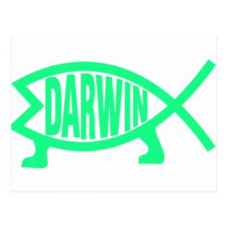Original Darwin Fish (Seafoam) Postcard
