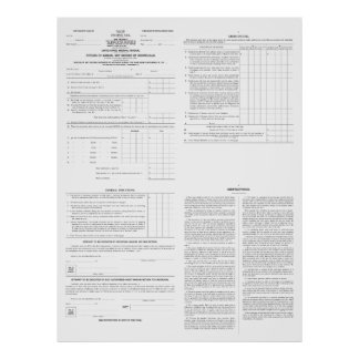 Original Income Tax Form 1040 from 1913 (4) Pages Poster