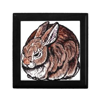 Original Rabbit Art, Pen & Ink, Watercolor Drawing Gift Box