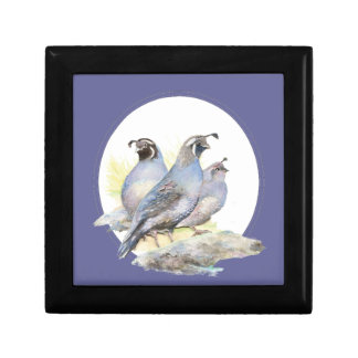 Original Watercolor California Quail Bird Gift Box