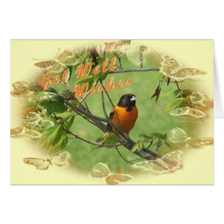 Oriole Get Well-customize Card