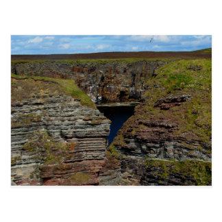 Orkney Cliffs Postcard