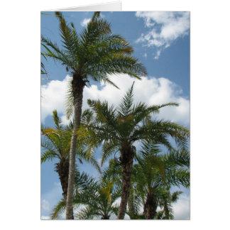 Orlando Palms Card