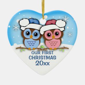 Ornement de Noël de couples de hibou de Cutie
