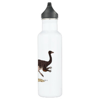 Ornithomimus 710 Ml Water Bottle