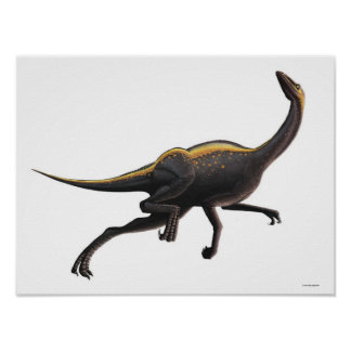 Ornithomimus Poster