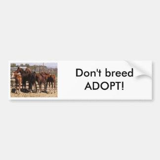 Orphan foals bumper sticker