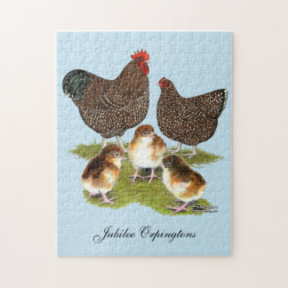 Orpington Jubilee Chicken Family Puzzle