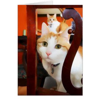 OSCAR & ERNIE heARTcats Card