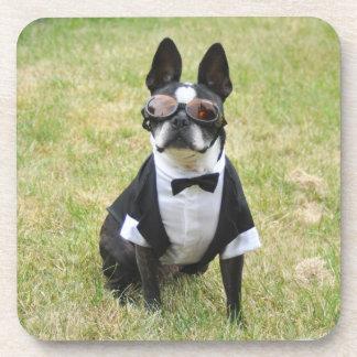 Oscar the Boston Terrier Tuxedo Coasters