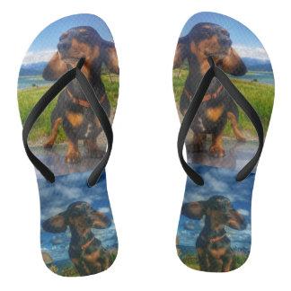 Oscars Voyage Sandals