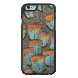 Oscillated Turkey feather pattern Carved® Maple iPhone 6 Case