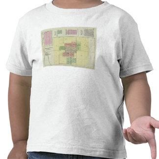 Oskaloosa Lea Walk and Bonanza Kansas Shirt