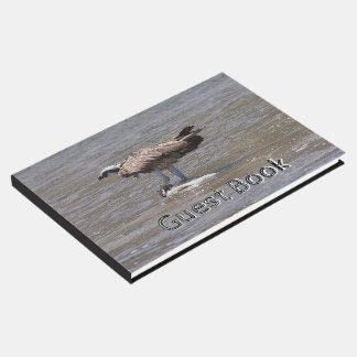 Osprey Bird Fish Wetlands Wildlife Guest Book