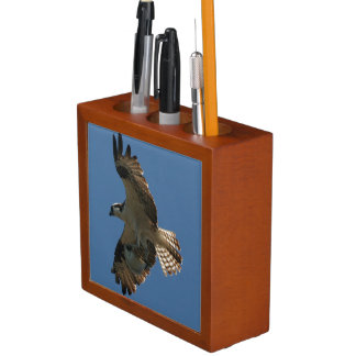 Osprey Bird Fish Wildlife Animals Desk Organizer