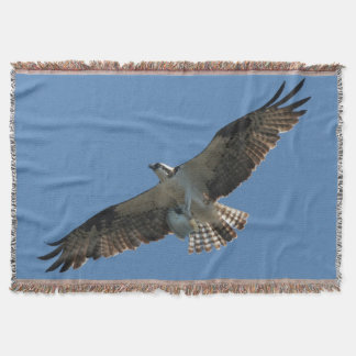 Osprey Bird Wildlife Animal Flying Throw Blanket