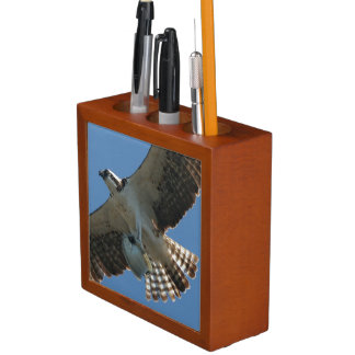 Osprey Birds Fish Wildlife Animals Desk Organizer
