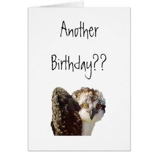 Osprey Birthday Card