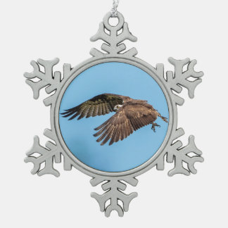 Osprey in flight at Honeymoon Island State Park Pewter Snowflake Ornament