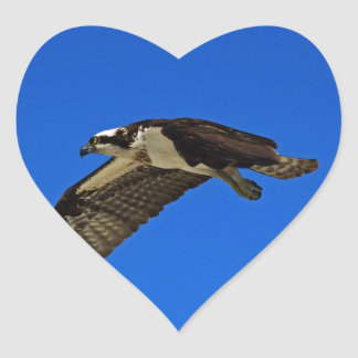 Osprey in Flight II Heart Sticker