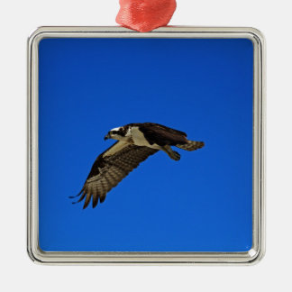 Osprey in Flight II Silver-Colored Square Ornament