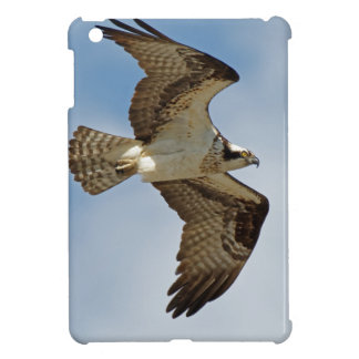 Osprey in Flight iPad Mini Cases