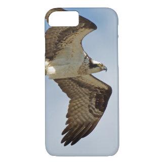 Osprey in Flight iPhone 8/7 Case