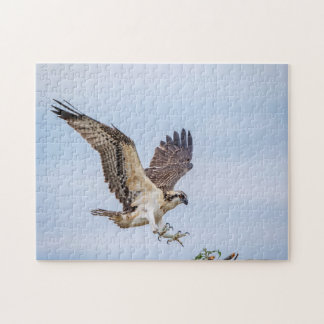 Osprey landing in the nest jigsaw puzzle