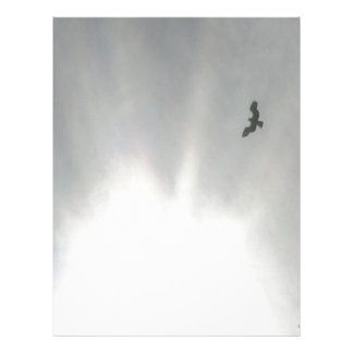Osprey Letterhead